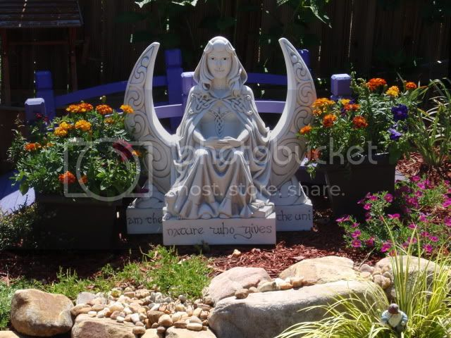 Danu's Garden Pictures, Images and Photos